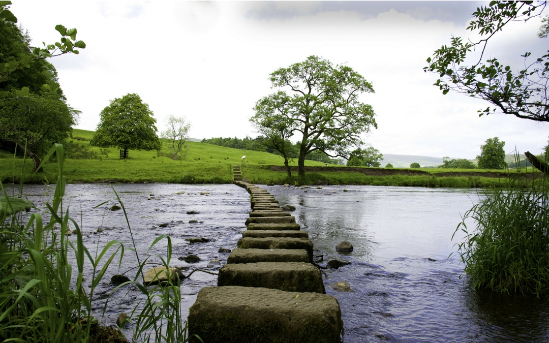 Turn Setbacks Into Stepping Stones